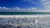vista previa del artículo Playa la Laja