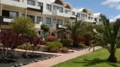 vista previa del artículo Hotel Calimera