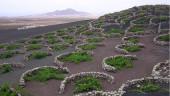 vista previa del artículo IV Semana de los Vinos del Volcán en Lanzarote