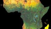vista previa del artículo 50 años del proceso descolonizador africano en el TEA