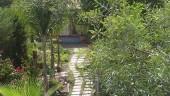 vista previa del artículo Apartamentos Adjovimar en Los Llanos de Aridane