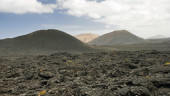 vista previa del artículo Descubriendo a pie las Canarias