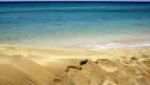 vista previa del artículo Vacaciones en la Isla de Fuerteventura