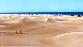 vista previa del artículo La Playa del Inglés en Gran Canaria