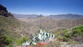 vista previa del artículo Deporte y aventura en Canarias