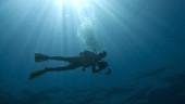 vista previa del artículo Practicar buceo en las aguas de Tenerife