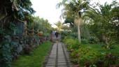 vista previa del artículo Hotel La Palma Romántica en la isla de La Palma