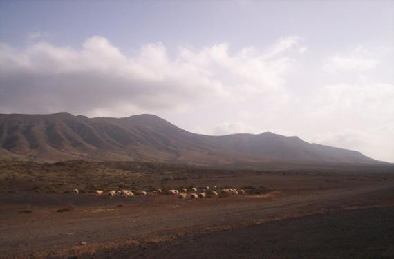 La isla de Fuerteventura