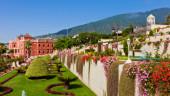 vista previa del artículo De turismo por La Orotava