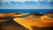 vista previa del artículo Otra forma de hacer turismo en Canarias