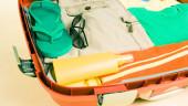 vista previa del artículo Los preparativos necesarios para antes de salir de viaje