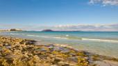 vista previa del artículo Ocio y diversión en Fuerteventura