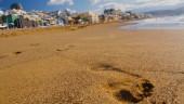 vista previa del artículo Cultura e historia de Las Palmas de Gran Canaria
