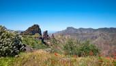 vista previa del artículo Las cumbres de Gran Canaria