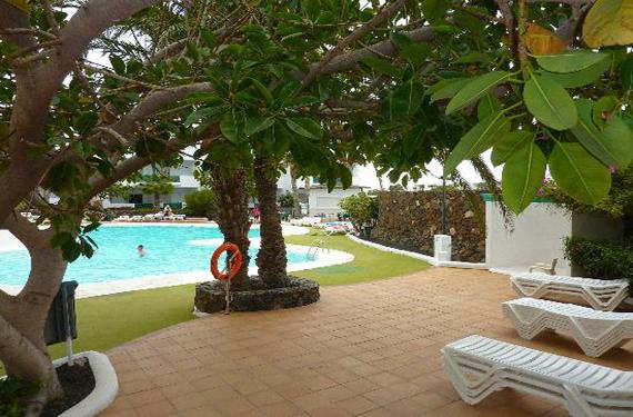 Apartamentos Ficus