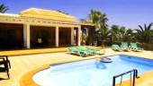 vista previa del artículo Vip Villas Caleta Dorada en Fuerteventura