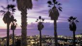 vista previa del artículo Diversión y ocio en Playa de Las Américas