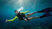 vista previa del artículo La práctica del submarinismo y buceo en Lanzarote