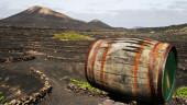 vista previa del artículo Lanzarote, una isla abierta al mundo
