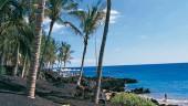 vista previa del artículo De turismo en Puerto del Carmen